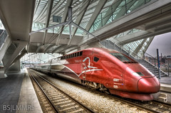 Long train running (Bas Lammers) Tags: roof white reflection lines station architecture modern backlight pattern belgium belgi wave wideangle trains 1020mm liege 1022mm hdr luik tgv architectuur calatrave lightroom thalys highspeedrail photomatix 50d canon50d mygearandmepremium ligeguilleminsstation