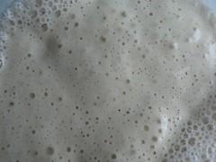 Sauerteig für Moro-Brot 008 16.06. 06:30