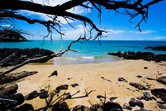 Down The Spencer Beach Trail - by Kanaka Menehune