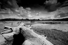 Little Milford (Bawmer) Tags: bw wales wideangle estuary explore pembrokeshire sigma1020 d40 interestingness136 i500 sigma1020f456exdchsm gradnd explore09sep07