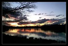 Relish (What My Eyes C) Tags: park sunset nature centennial colours sydney pictureaustralia impressedbeauty nokia6300