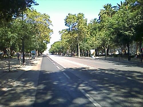 Avenida Liberdade 3