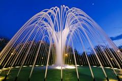 Fuente // Fountain 작성자 Davic