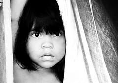 Marubo Girl (TomekY) Tags: parque brazil portrait girl brasil amazon tribal basin tribe population ethnic 2008 amazonas flore amazonia tribu amazonie faune amerindien etnia indigenes amerique inni autochtones ethnie amazonien javari mywinners yawari sudamerique marubo puebles marubos povoindigena amazonstribe bassinamazonien bresilindidenne
