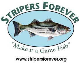 Stripers Forever