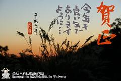 年賀2009 (6)_調整大小.JPG