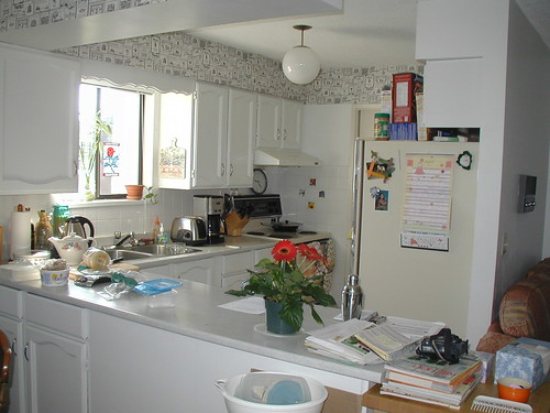 Kitchen in 2005