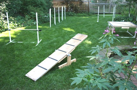 Skippy S Backyard More Home Made Agility Equipment