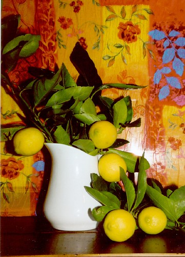 WHITE JUG WITH LIMES