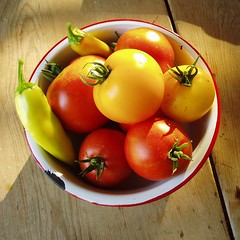 Mmmmm Harvest... - Fort Collins, Colorado (gregor_y) Tags: garden tomato backyard colorado tomatoes fortcollins vegetable fresh peppers wax organic homegrown hungarian superfantastic lemonboy gregyounger smacznego