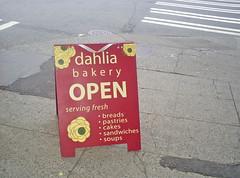 Dahlia is Open