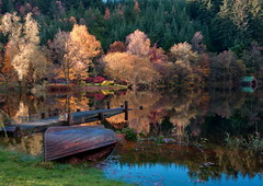 Autumn Colours (PeterYoung1) Tags: autumn colour landscape scotland scenic loch trossachs wow1 wow2 wow3 wow4 lochard flickrstruereflection1 flickrstruereflection2 flickrstruereflection3 flickrstruereflection4 flickrstruereflection5 flickrstruereflection6