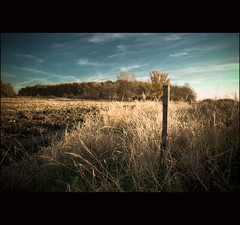 Fields of Autumn (b@ndy) Tags: autumn fields sz canon50d mezk