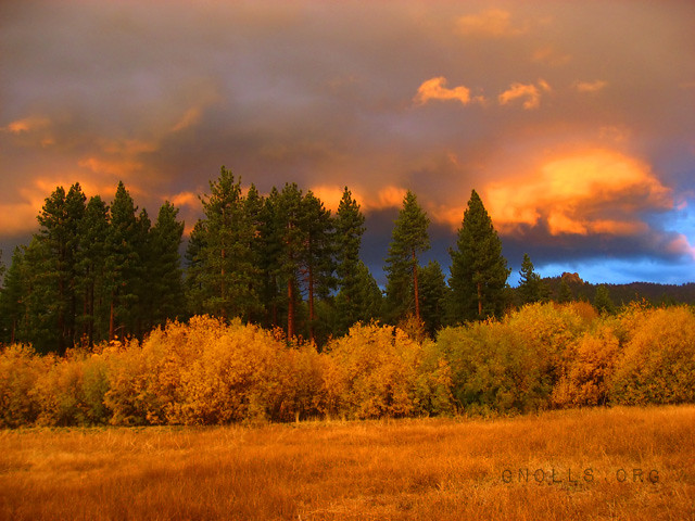 Golden Tahoe sunset with fall colors