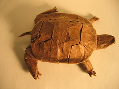 Western Pond Turtle (PhillipWest) Tags: origami paperfolding papiroflexia