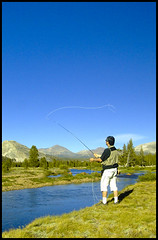 fishing yosemite flyfishing toulumne