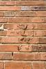 vägg n z' shadow experiment (betongelit) Tags: halmstad häng intellekt betongelit