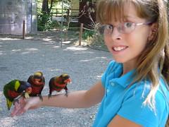 in the Lori walk (mjanean) Tags: elizabeth lili lorikeets tracyaviary barnetts