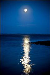 asking for the moon (outdoorstudio) Tags: blue moon seascape water reflections landscape denmark quality clarity fullmoon moonlight bec reflexions soe naturesfinest supershot loejtland mywinners abigfave shieldofexcellence platinumphoto superbmasterpiece diamondclassphotographer flickrdiamond essentialbeauty ysplix excellentphotographerawards ljomi jettewfrederiksen overtheexcellence thegoldenmermaid standinginthemoonlightshadow loddenhoej internationalgeographic