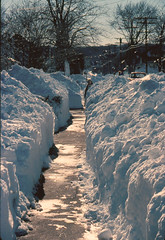 The Blizzard of '78 (Sister72) Tags: snow boston ma quincy massachusetts snowstorm 1978 blizzard deadly wickedcold blizzardof78 timetomovebacktonj stormoftheapocalyspse