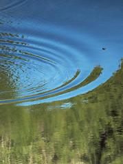 circles in the sky (fhuell) Tags: trees lake verde green water alberi clouds circle lago nuvole acqua riflessi cerchi reflexes d80 fotoincatenate laghettodelleprese