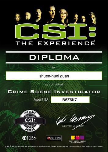 CSI -- The Experience