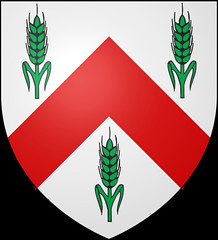 Arms of the Chief of Clan Riddell, The Riddell of that Ilk, Baronet Riddell of Riddell