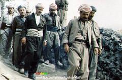 Kurd kurdistan Barzani