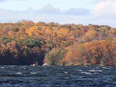 Autumn Landscape (donsutherland1) Tags: blue autumn trees ny newyork fall nature water clouds landscape october foliage soe flickraward westharrison kensicoreservoir afhht ryelake