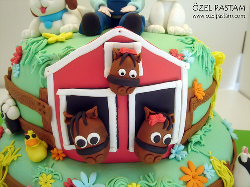 İpek'in Çiftlik Pastası / Farm Cake