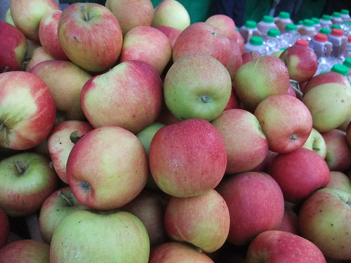 SFO Day 2: Apples from the Ferry Plaza Farmers Market