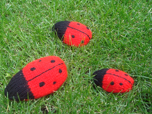 Free Pattern Lovely Knitted Ladybird 171 Stitch London Blog