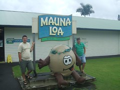 Mauna Loa Macadamia Nuts!