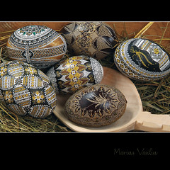 easter egg - Lucia Condrea Museum (Bazalai) Tags: art motif museum composition painting easter design artwork symbol artistic drawing geometry decorative patterns painted traditional egg craft ornament ou romania eggs wax geometrical colourful ornamental technique coloured romanian eggshell decorated roumanie motives ovoid simbol bucovina ressurection rumänien vopsit românia decorativ bukowina desen românesc pictat mariusvasiliu terradesign bazalai bucovine bucovinean paşti paşte înviere ouă artă oudepaşti încondeiat închistrit compoziţie tehnică meşteşug tradiţie chişiţă ceară