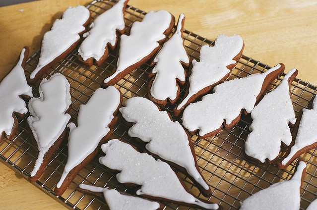 Gingerbread and Nikole's feathers