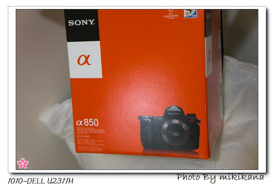 2010-Sony a850-1