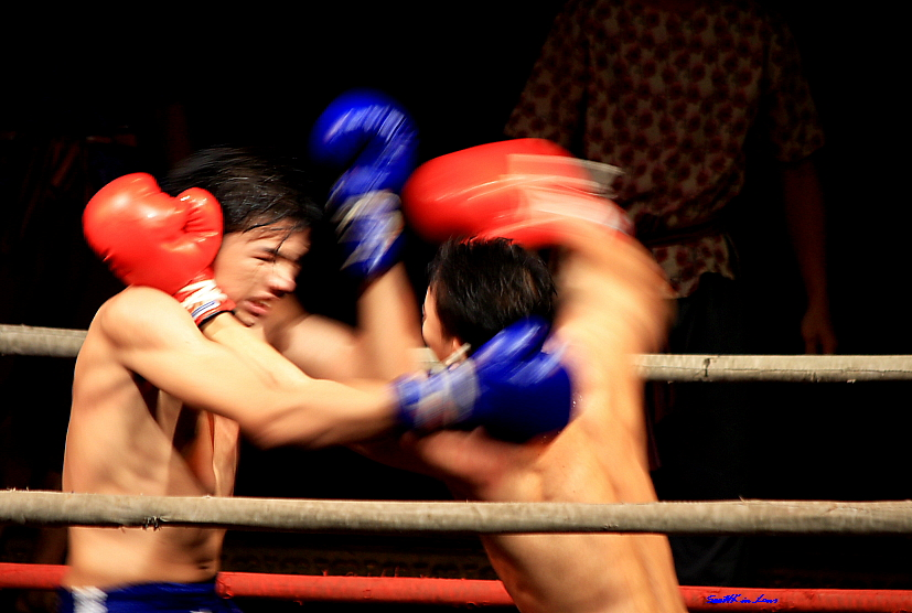 Punch of Fury @ Nong Nooch Tropical Garden, Pattaya Thailand