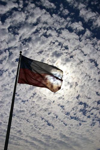 bandera chilena - maria paz vargas por maria paz vargas.