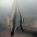 Long-finned batfish