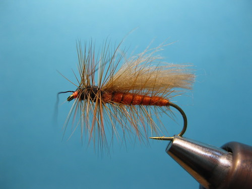 Cdc SALMON FLY