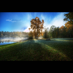 Natural Highlight (geirkristiansen.net.) Tags: morning autumn mist fall fairytale nikon angle wide sigma 1224mm lier     buskerud sigma1224mmf4556 d700  gettyimagesnorwayq2