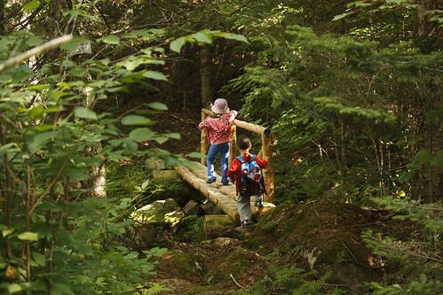 Willoughby Bog Hike (13)