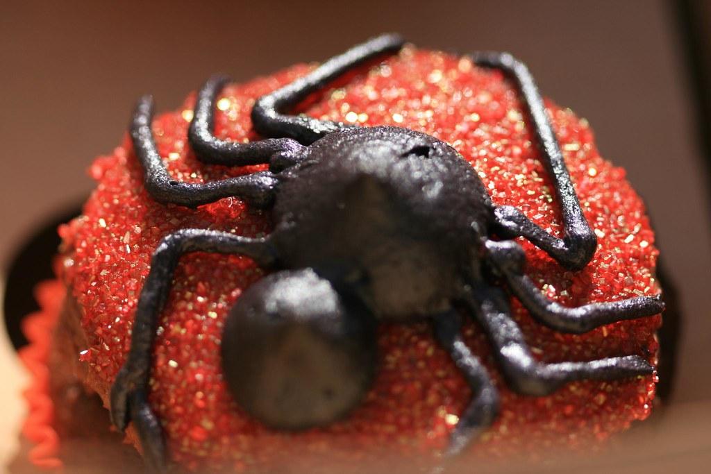 salted caramel spider cupcake