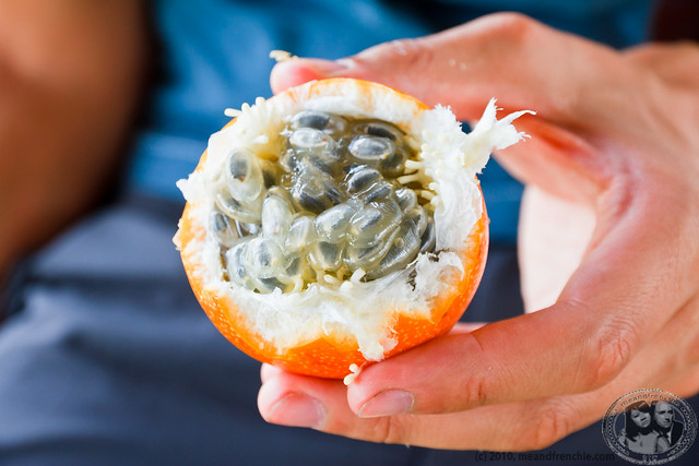 Granadilla Passion Fruit