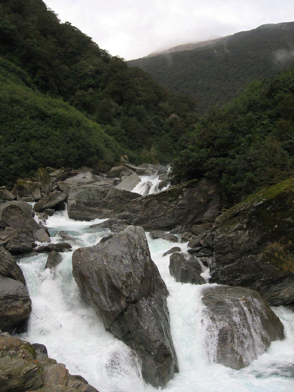 Riviere NZ 12