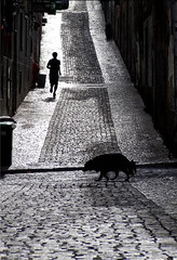 Eres.....  luz (Color-de-la-vida) Tags: people bw dog portugal silhouette lisboa bn silueta beso barrioalto adoquines d40 flickrduel quetengasunlindofindesemana colordelavida ilisboa