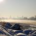 Die Elbe bei Dresden im Winter