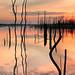 Fall colors at the Squan Reservoir
