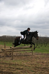IMG_5806 (equiliber) Tags: horse canon cheval europe pferd equestrian hunt foxhunting equus chasse paard oudenaarde jachtclub jacht slipjacht heurne chassecourre equiliber hippisch jachtrit equusjachtclub jachtwandeling equusjachtrit21032010