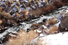 Owens River (DonCrain) Tags: california hiking geology sierranevada owensrivergorge owensriver longvalleycaldera bishoptuff